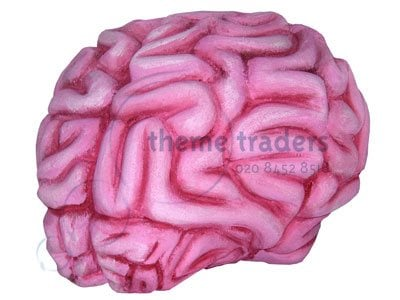 Brain oversized – Theme Traders